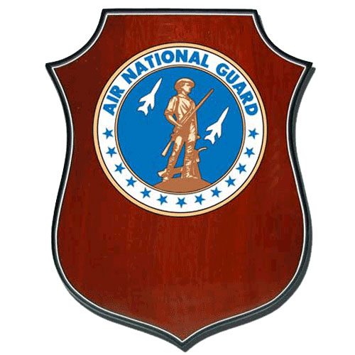 Air National Guard Seal Award Plaque