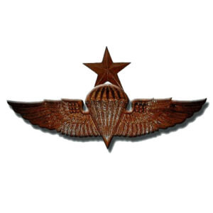 Naval Senior Parachutist Badge Jump Wings Plaque