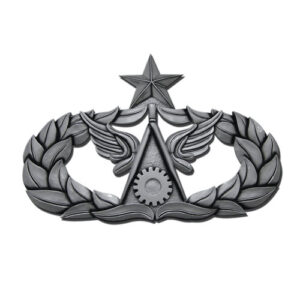 Senior Civil Engineer Badge Insignia Plaque