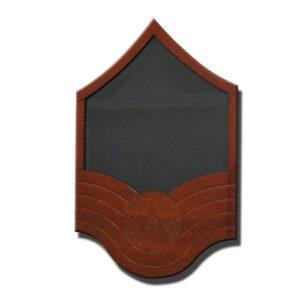 US Air Force E7 Retirement / Shadow Box Natural Light