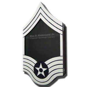 US Air Force E9 Retirement / Shadow Box Colored