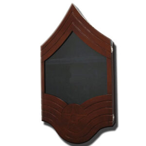 E-9 Senior Master Sergeant Shadow Box