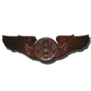 USAF Enlisted Aircrew Badge Insignia Plaque