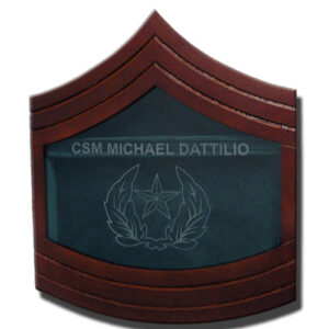 Staff Sergeant Major E-9 Shadow Box