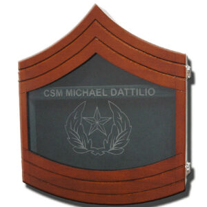 U.S. Army E-9 Shadow Box