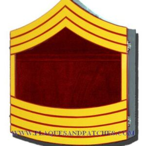 Marine Corps E9 Retirement Shadow Box